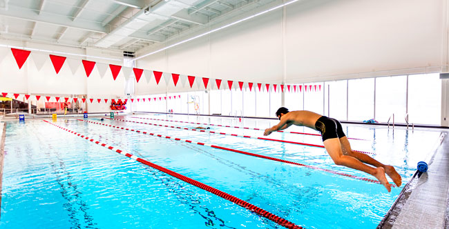 swimmer dives into pool at Laurier Brantford YMCA