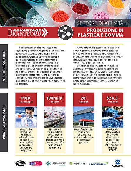 front of the Plastics and Rubber Products sector profile in Italian