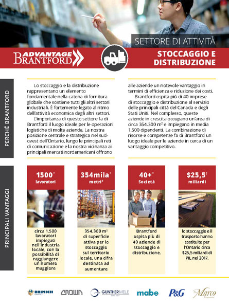 front of the Warehousing and Distribution sector profile in Italian