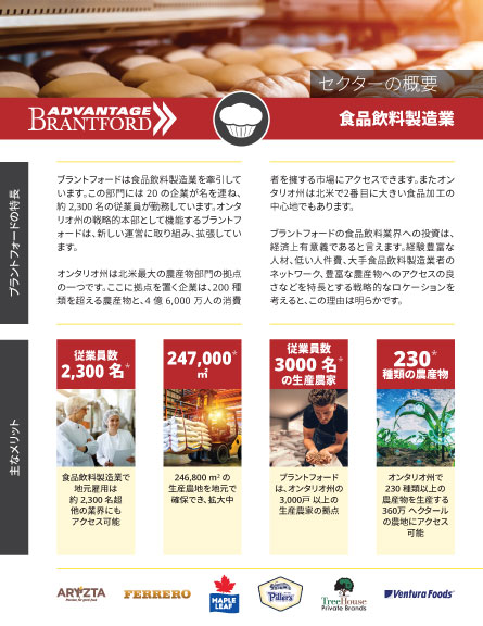 front of the Food and Beverage Manufacturing sector profile in Japanese