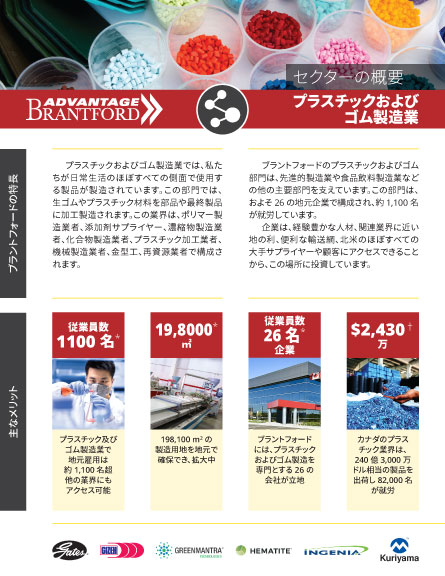 front of the Plastics and Rubber Products sector profile in Japanese