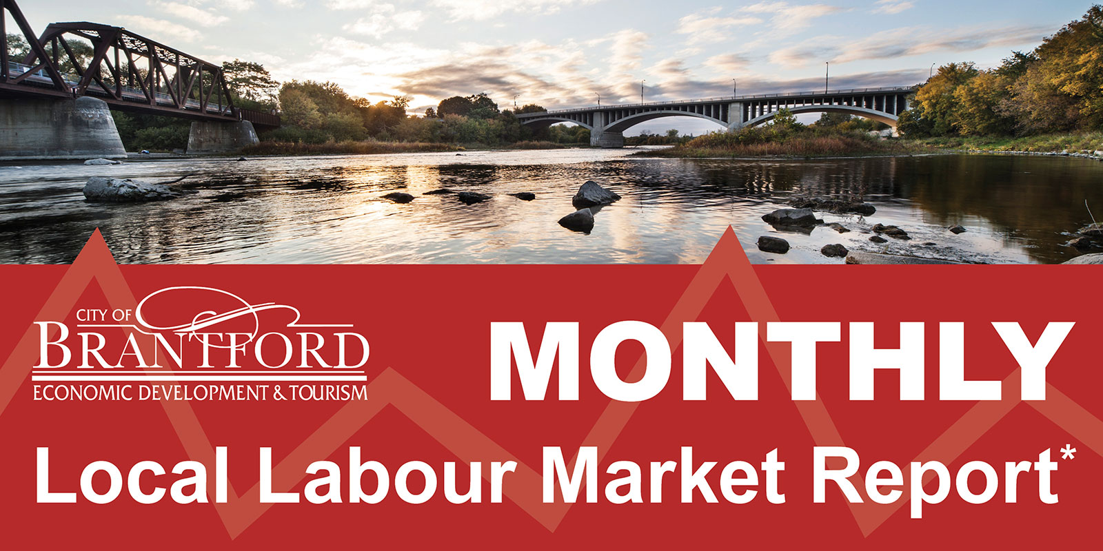 Monthly Labour Market Update Graphic
